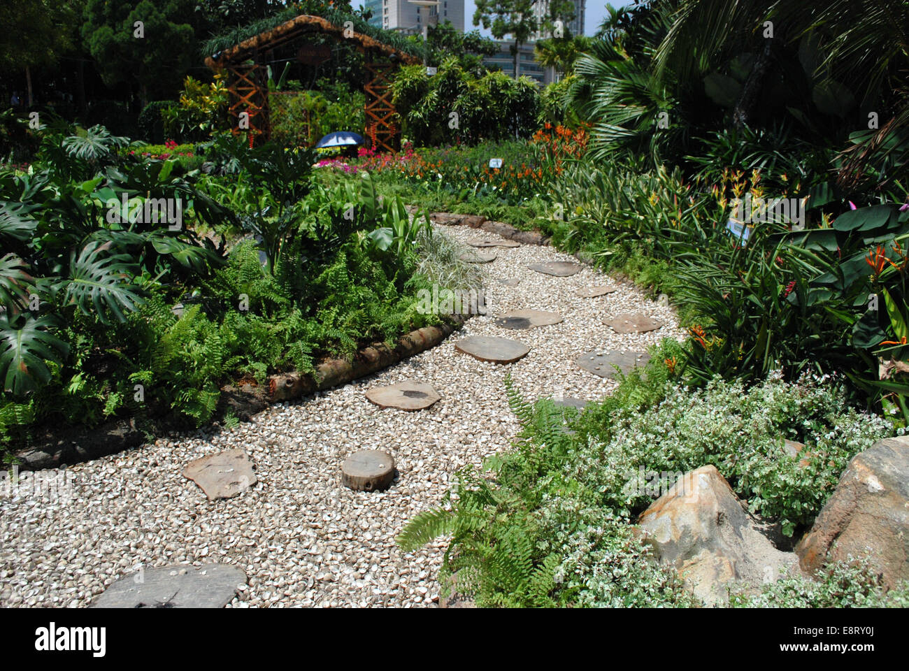 Landscaped Garden With Cockle Shells And Wood Bloks Foot Path
