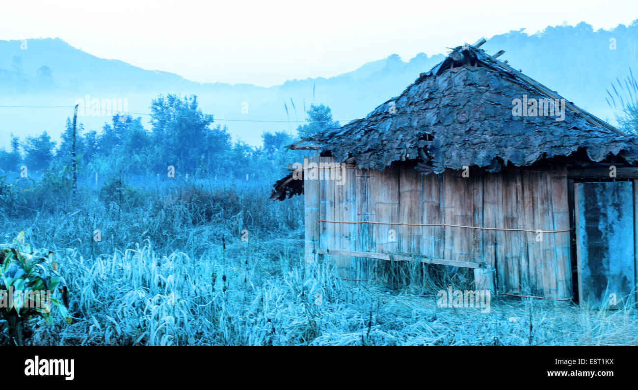 The Abandon cottage on abandon Farm Field with Cooler Filter. - Stock Image