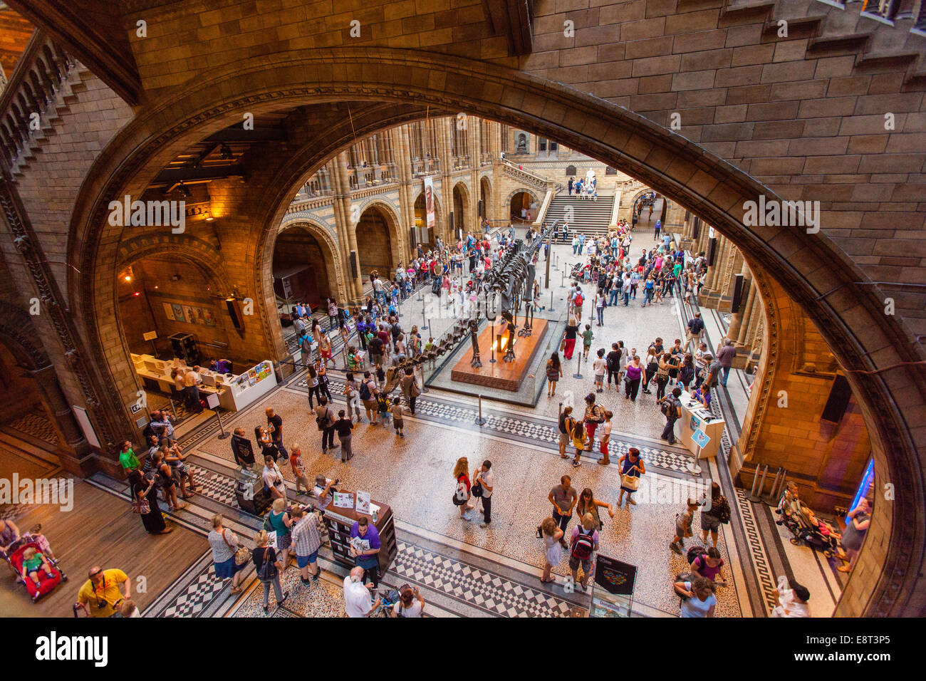 The Central Hall in Natural History Museum in London. United Kingdom. - Stock Image