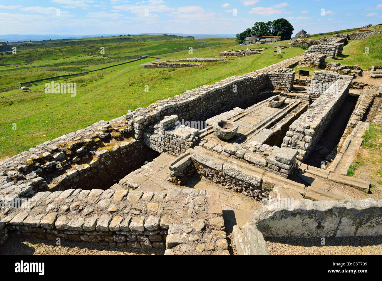 Ruins of the Roman fort with the associated campsite, Housesteads Roman Fort, Haydon Bridge, Hexham, Northumberland, - Stock Image