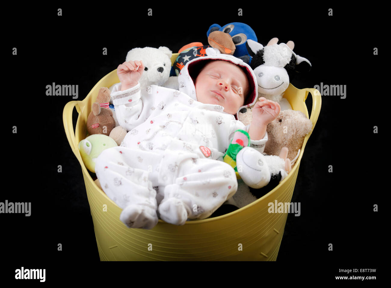 Baby sleeping in a bucket full of stuffed animals - Stock Image
