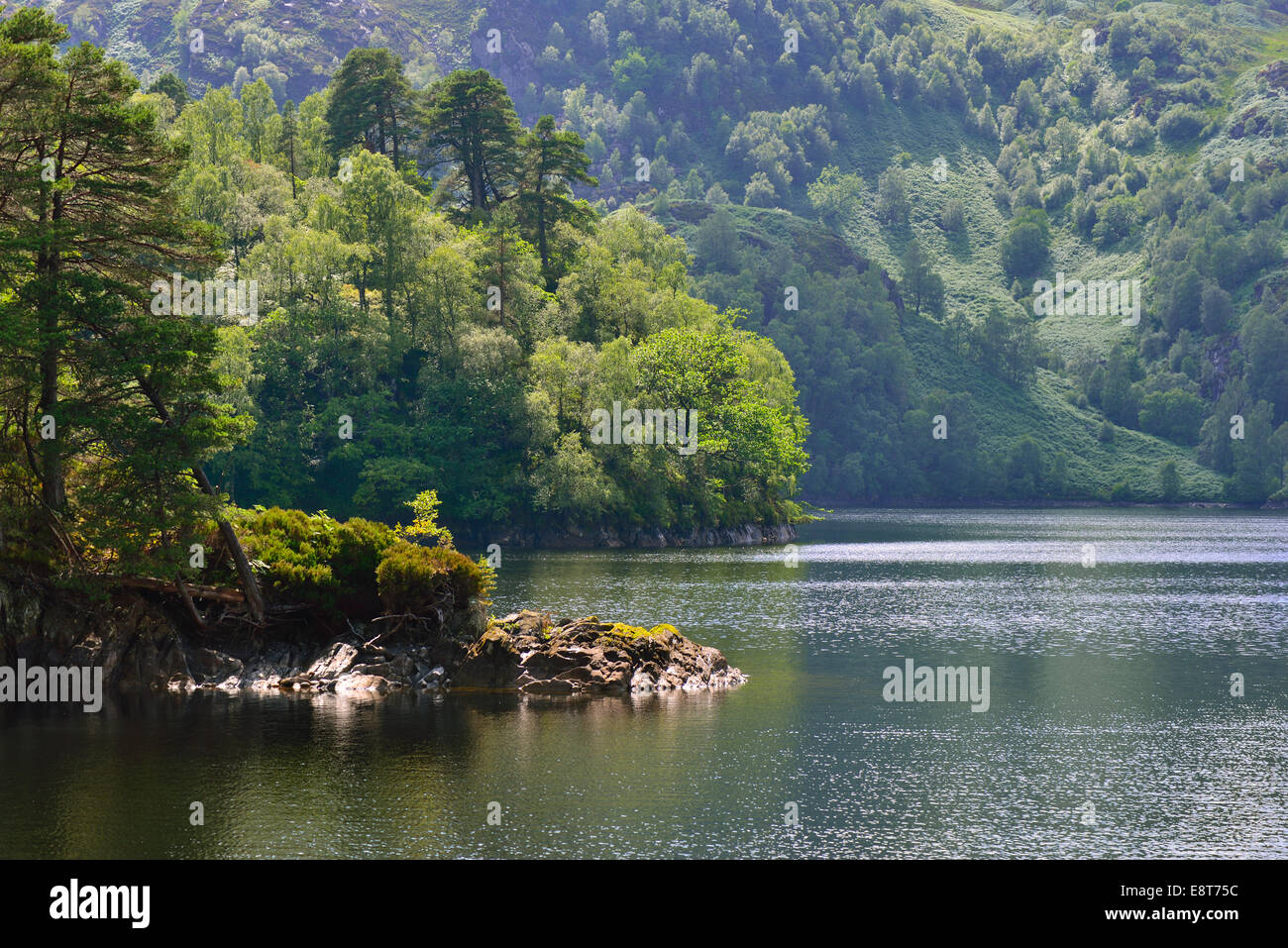 Waterside scenery at Loch Katrine, Stirling, Central, Scotland, United Kingdom - Stock Image