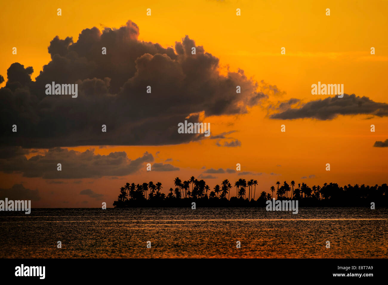 Sunset and an island with palm trees, Sulawesi, Indonesia - Stock Image