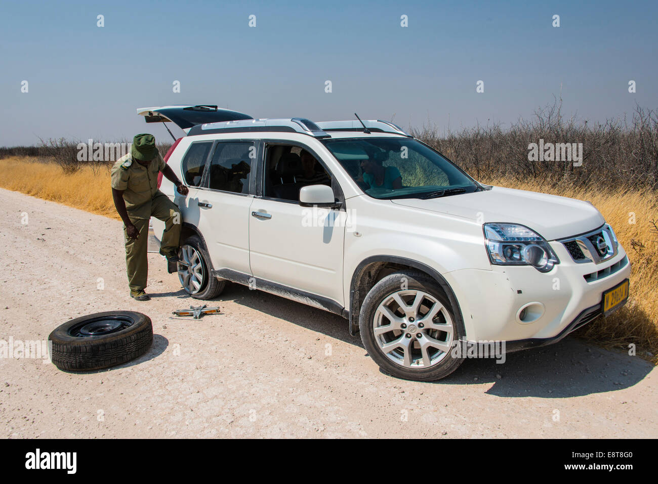 African gamekeeper changing a tire of an SUV, Etosha National Park, Namibia - Stock Image