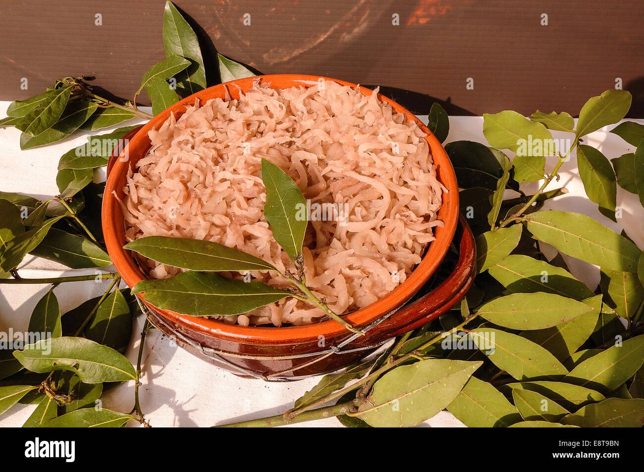 Italia friuli v g cividale cucina tipica brovada una for Cucina atipica roma