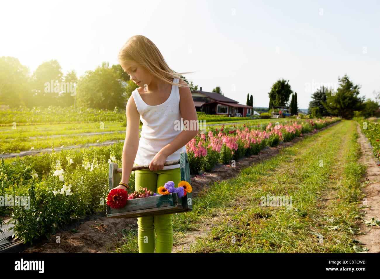 Caucasian girl picking flowers on farm Stock Photo