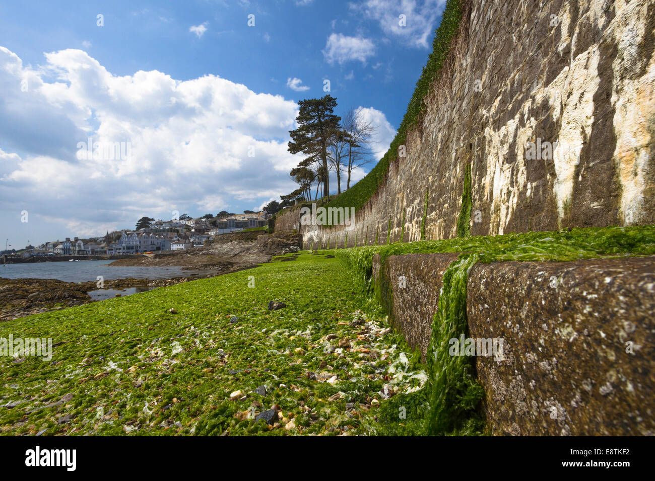 Seafront at Lowtide, St. Mawes, Cornwall, Uk, Landscape - Stock Image