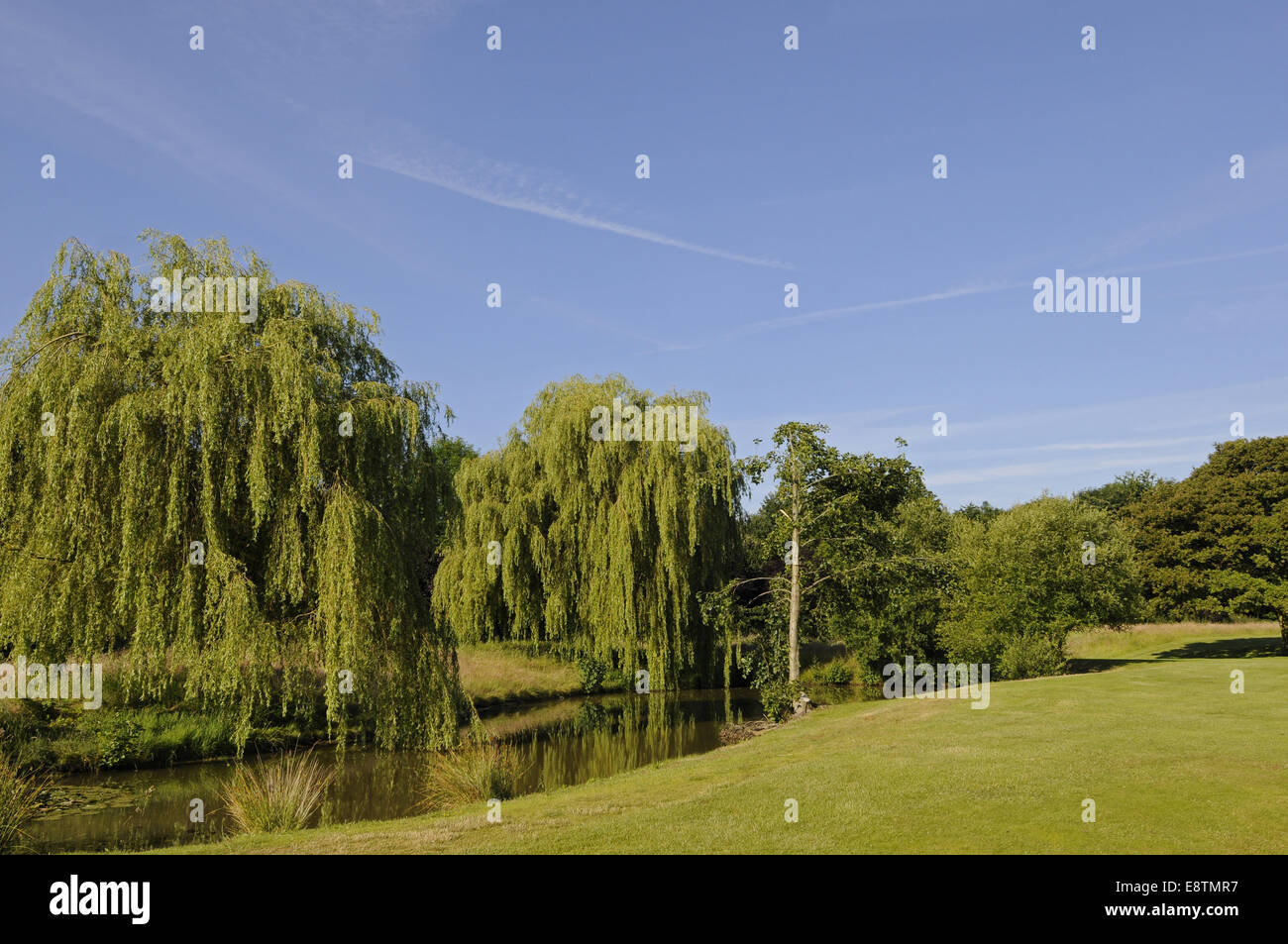17th Hole Stock Photos Amp 17th Hole Stock Images Alamy