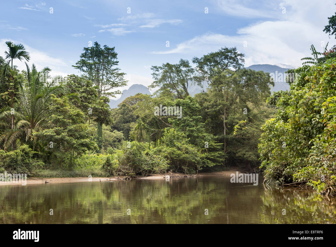 Melinau River with rainforest and mountains, Gunung Mulu national park, Sarawak, Malaysia - Stock Image