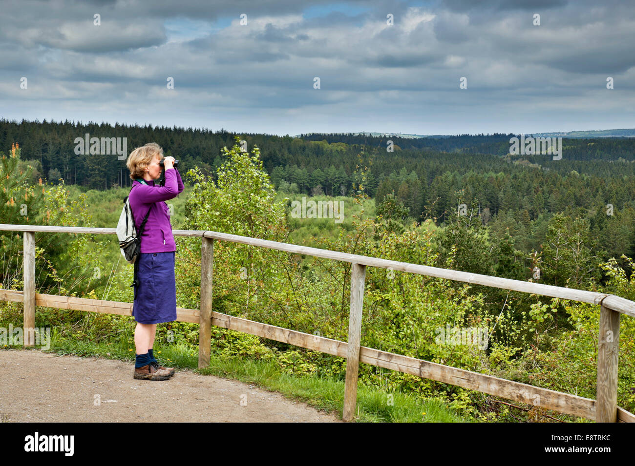 New Fancy Viewpoint; Forest of Dean; UK - Stock Image