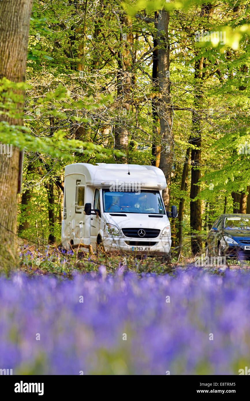 Bluebells; and CamperVan; Forest of Dean; UK - Stock Image