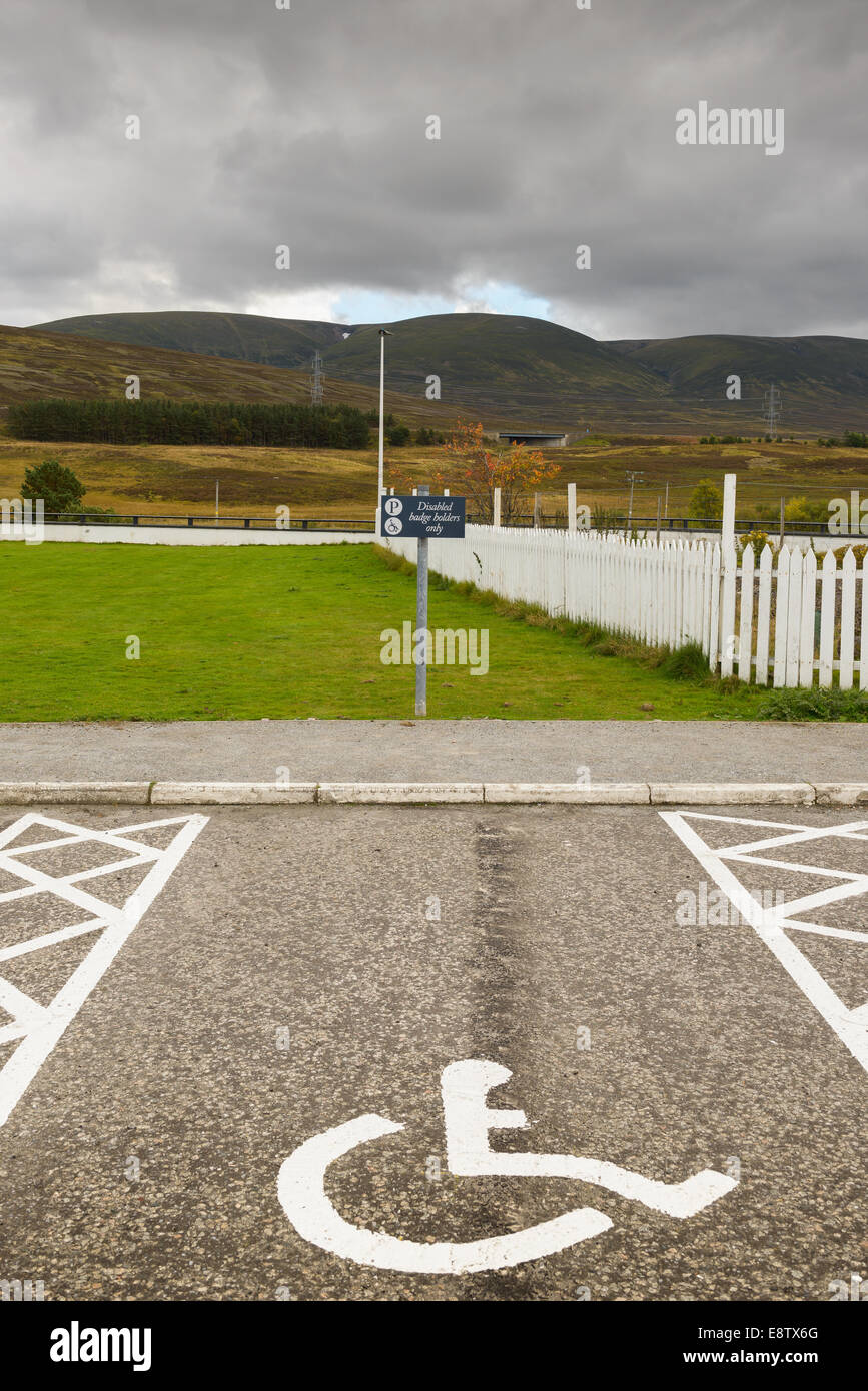 A disabled parking space unoccupied with symbol and sign in a tarmac car park - Stock Image