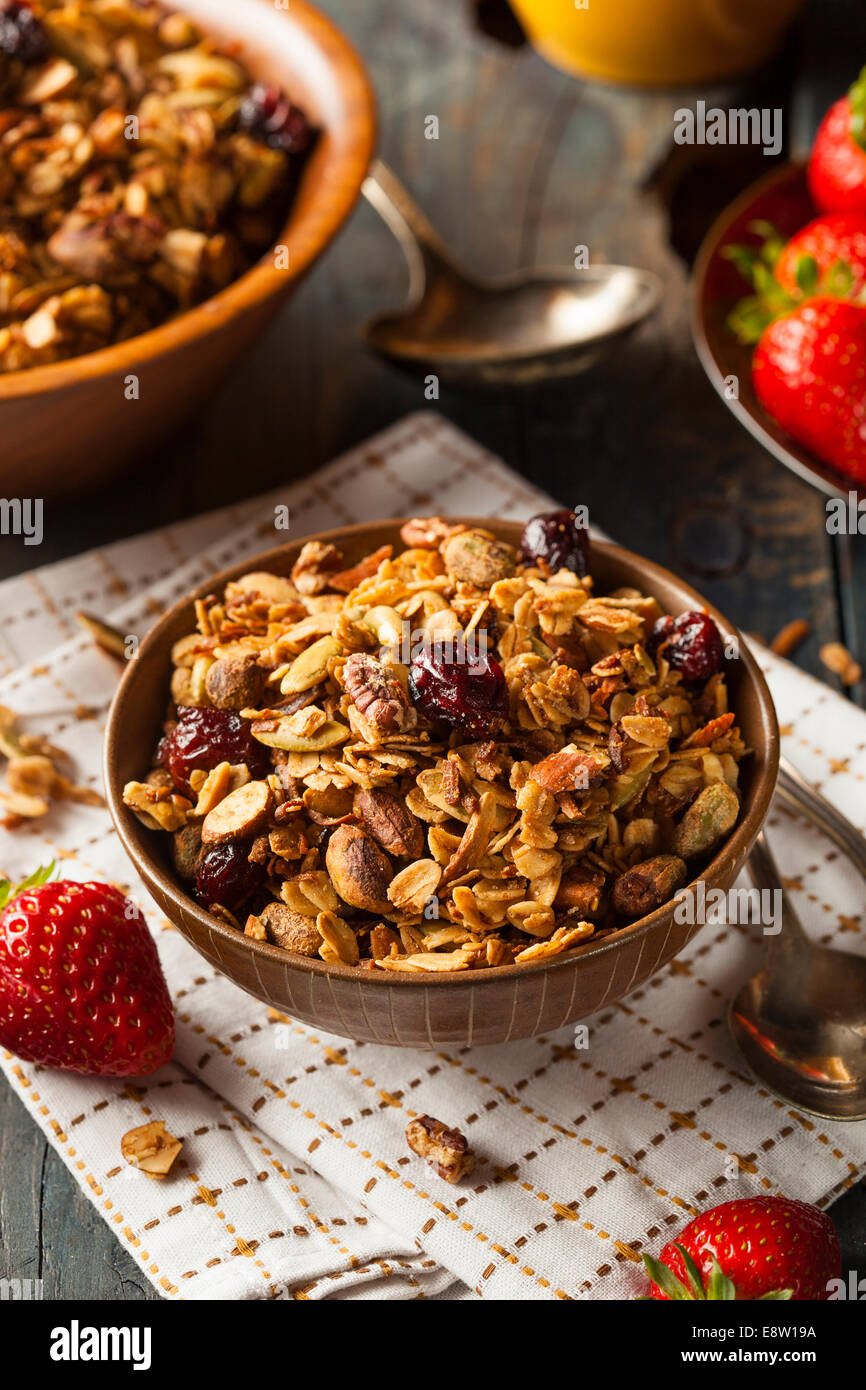 Healthy Homemade Granola with Nuts and Dried Cranberries - Stock Image