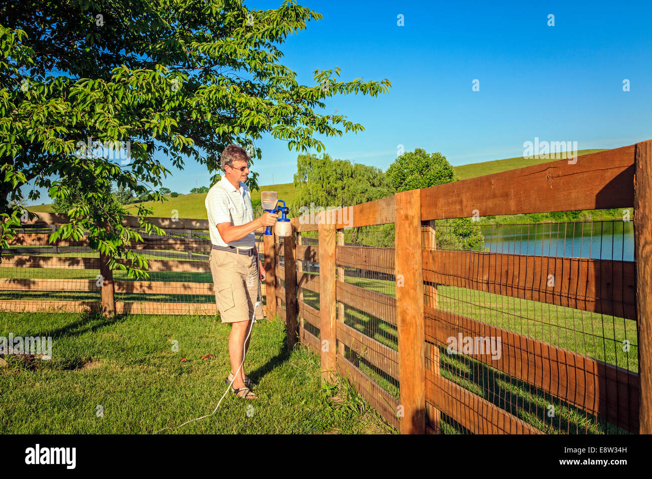 A man is staining wooden fence - Stock Image