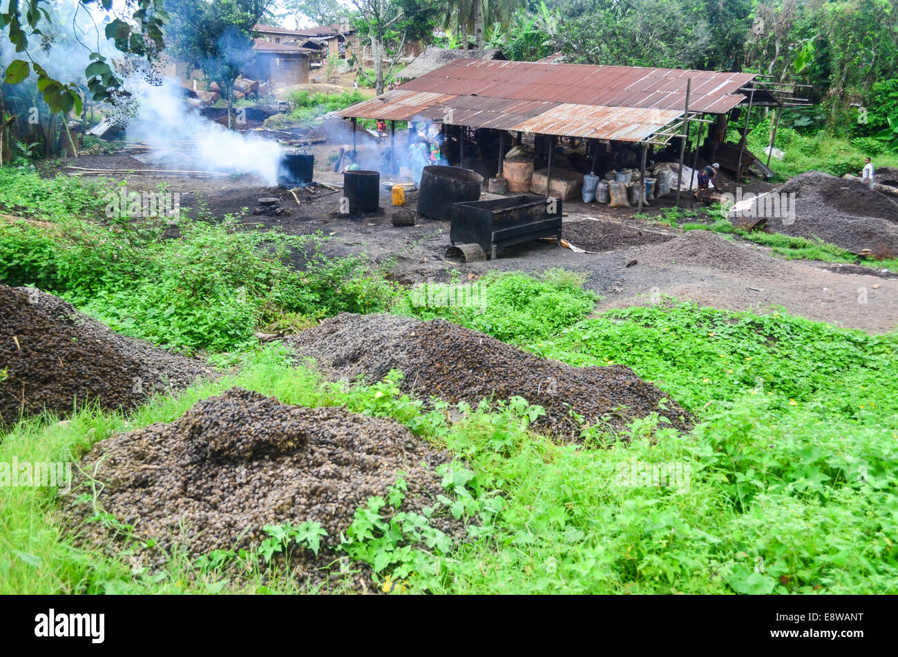An artisanal palm oil factory in Nigeria - Stock Image