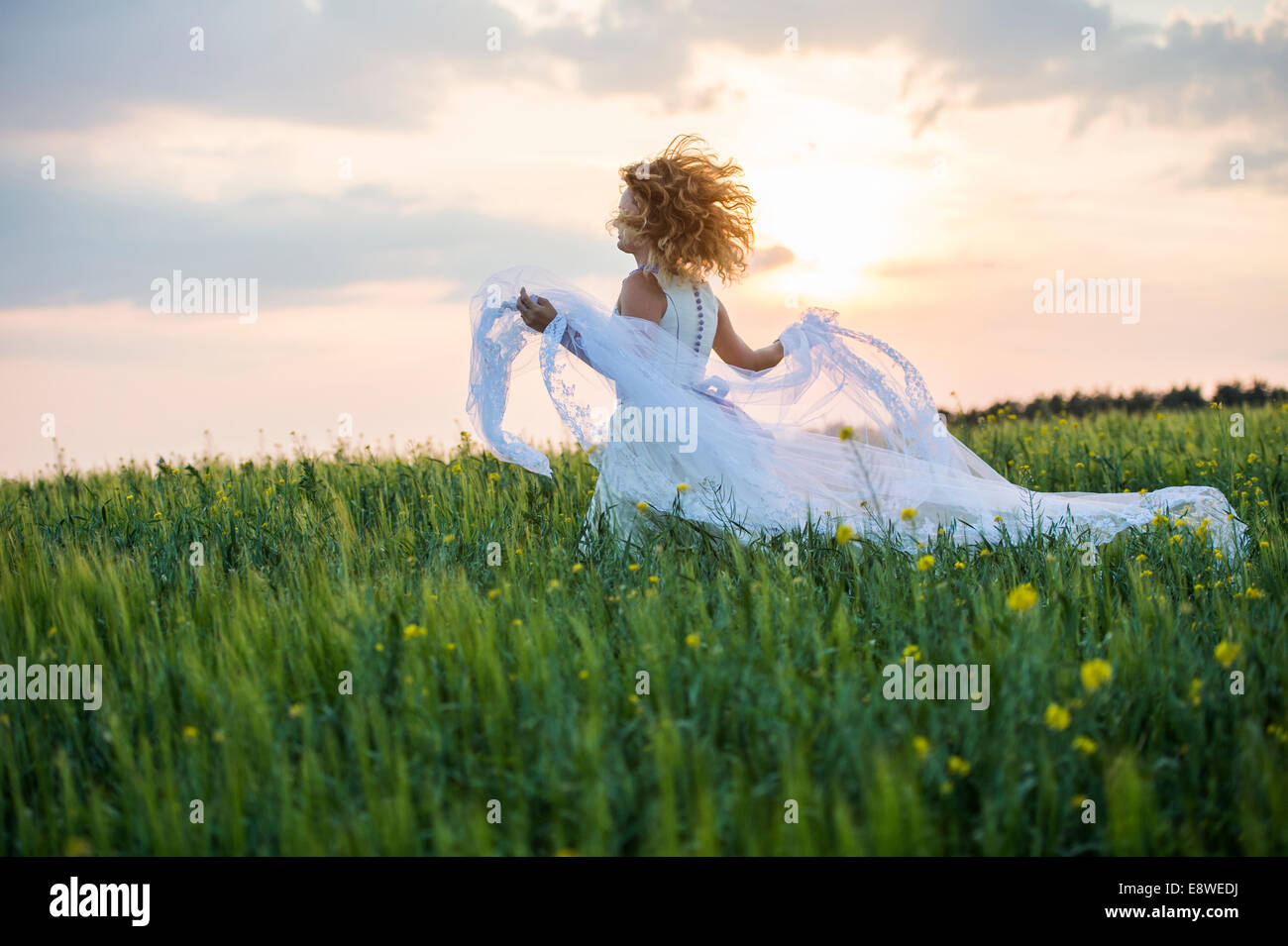 The runaway bride - a young woman girl in a wedding dress running fleeing in a field of yellow flowers evening UK Stock Photo