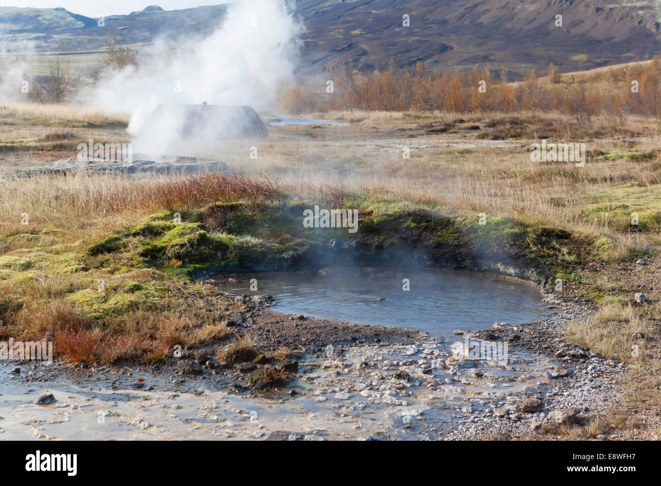 Steam vents and pools of boiling water bubble away across Iceland's Great Geysir site - Stock Image