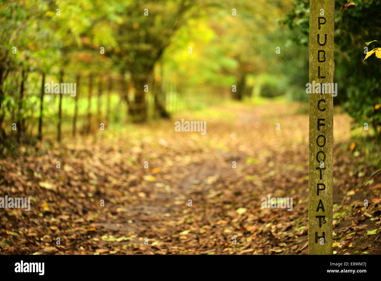 Public footpath signpost in Autumn - Stock Image