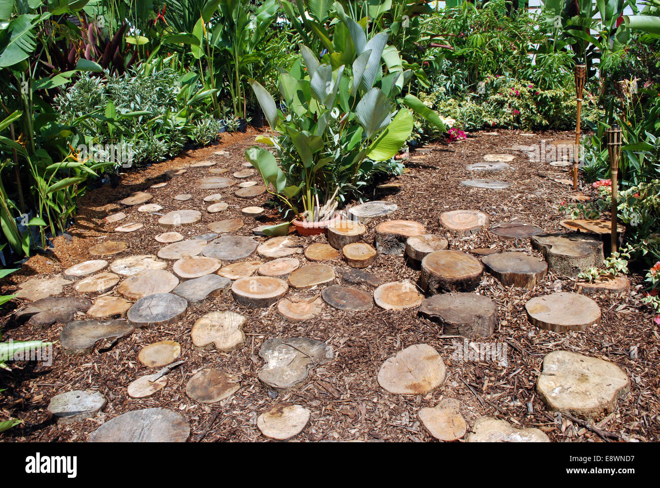 Landscaped garden with wood blocks foot path Stock Photo: 74324355 ...