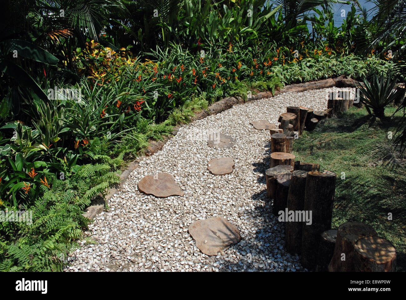 Landscaped Garden With Cockle Shells And Wood Blocks Foot Path