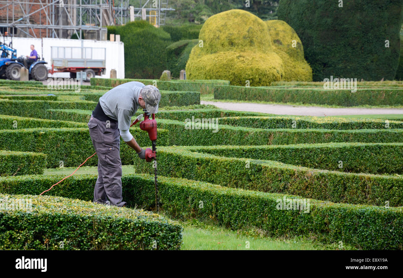 Gardeners cutting hedges at Elvaston Hall, Derbyshire, England. - Stock Image