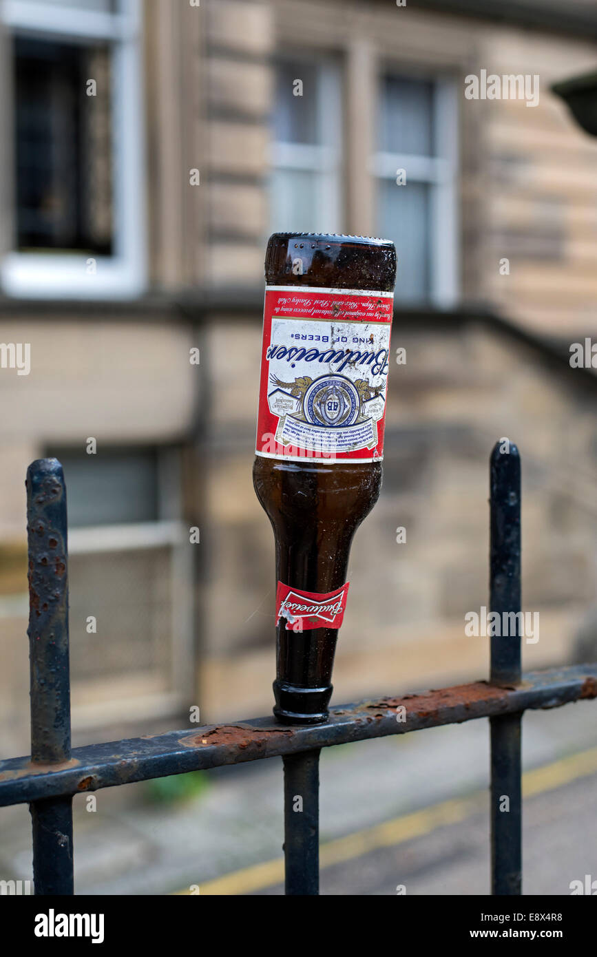 The morning after - an empty bottle of Budweiser beer deposited on railings in the West End of Edinburgh. - Stock Image
