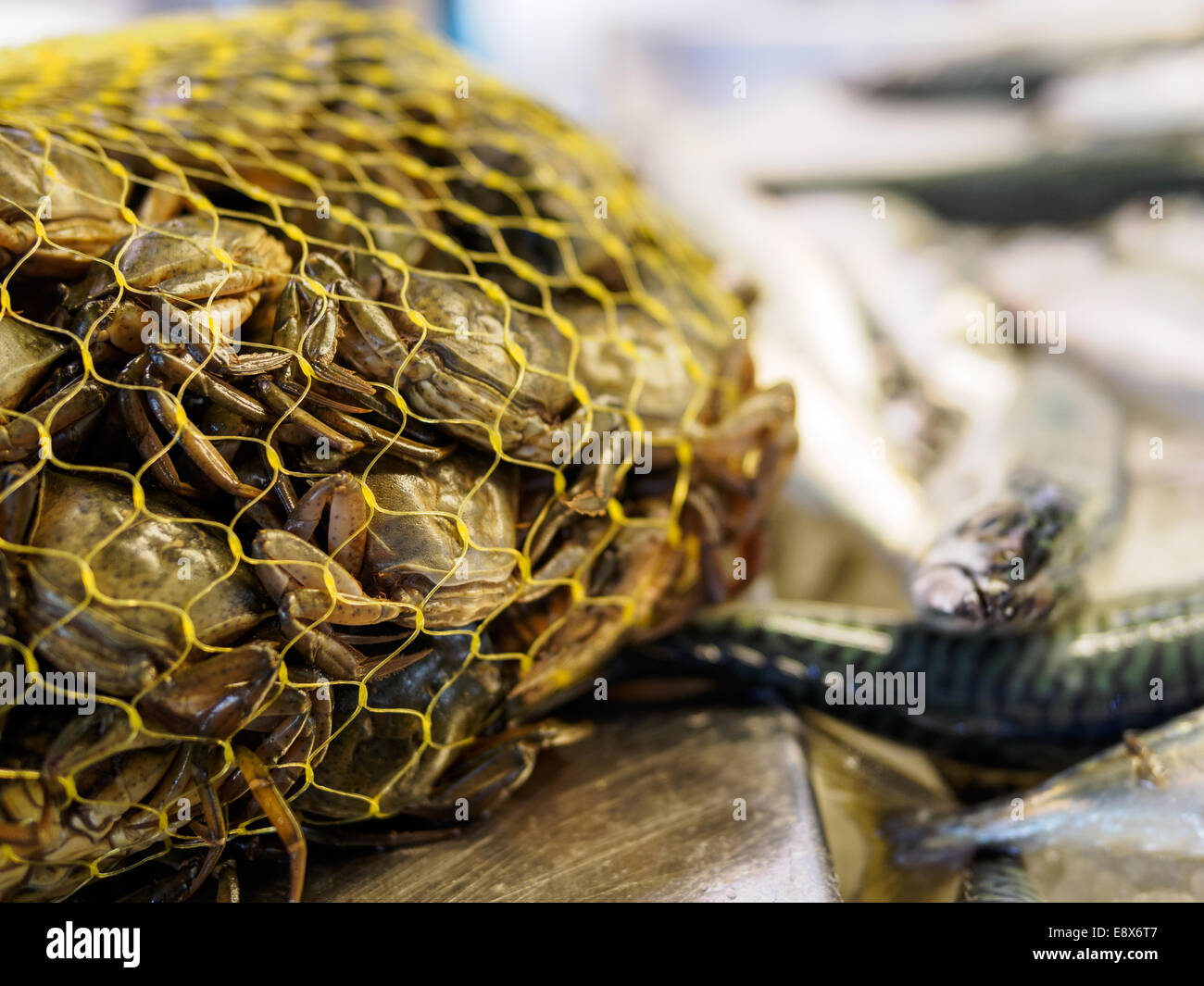 Bag of live shore crabs lying next to eels, on sale at Rialto Market in Venice, Italy. - Stock Image
