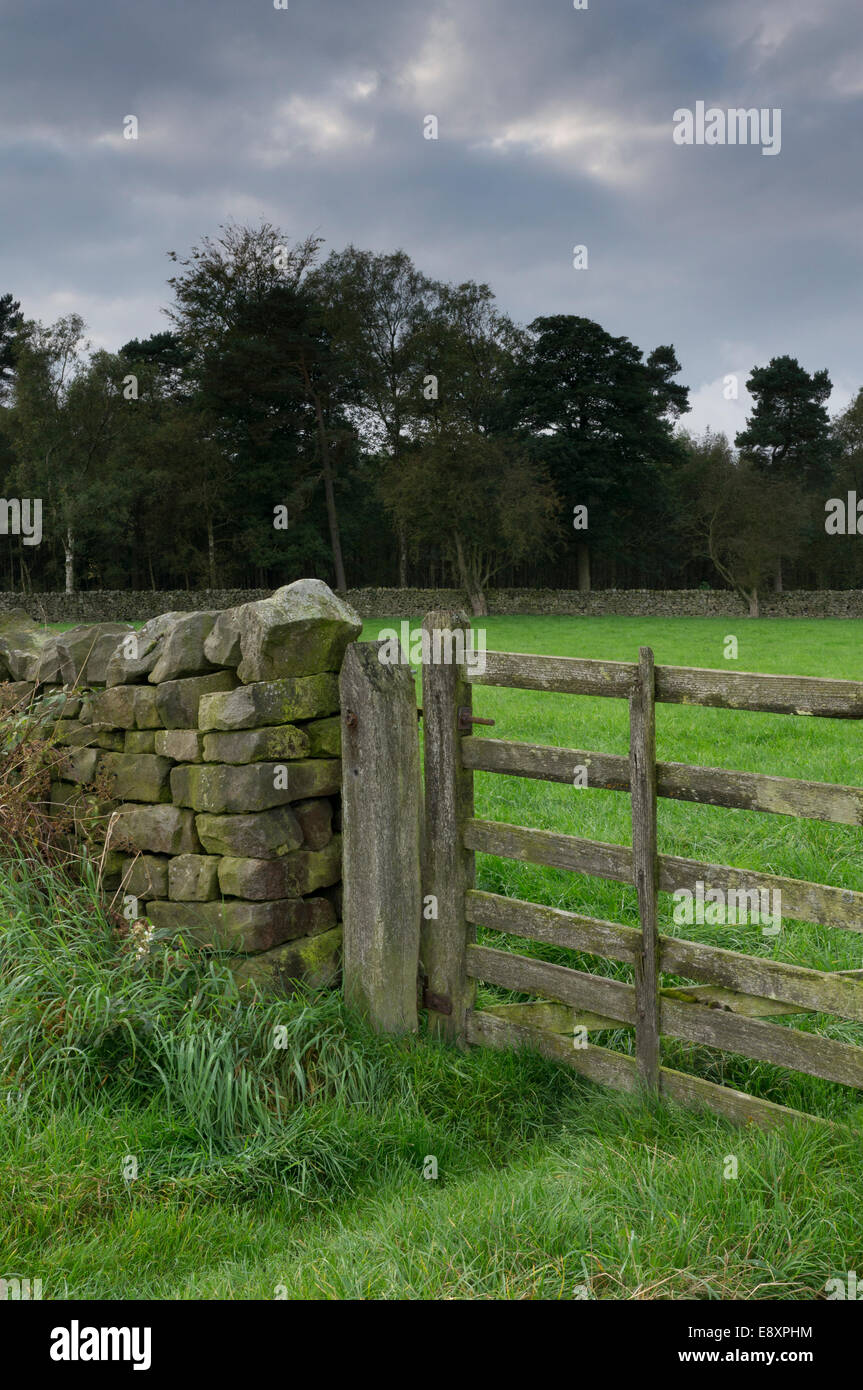 Close-up of closed wooden gate & rustic dry-stone boundary wall of farm pastureland field in scenic countryside - Stock Image