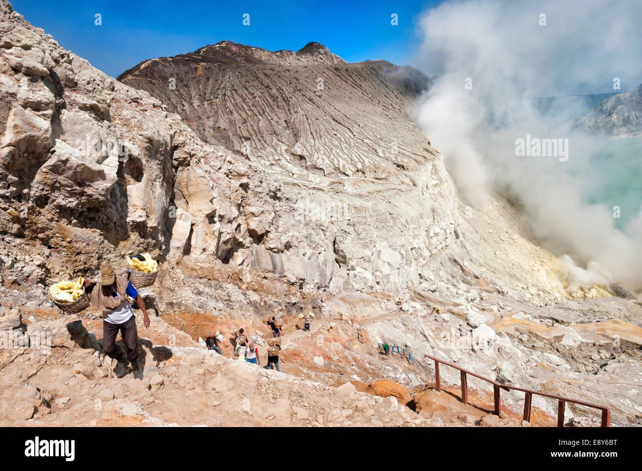 Sulphur carriers climbing out of Kawah Ijen volcano (Ijen crater), Banyuwangi, East Java, Indonesia, Asia - Stock Image