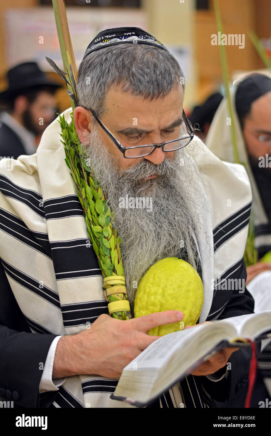 Religious Jewish man blessing the esrog and Lulv in a synagogue in Brooklyn, NY during the Jewish holiday of Sukkot. - Stock Image