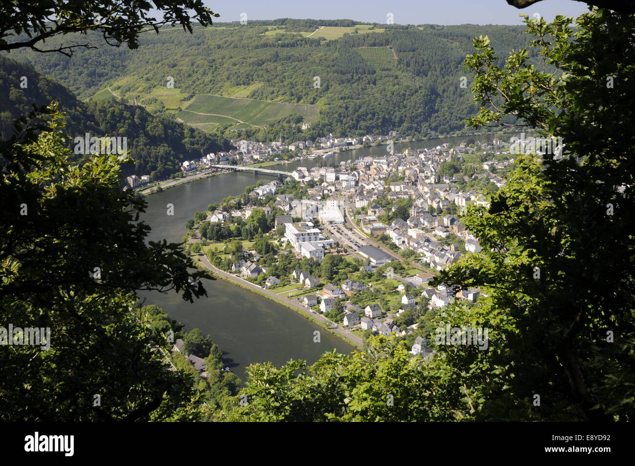 Trotting at the Mosel - Stock Image