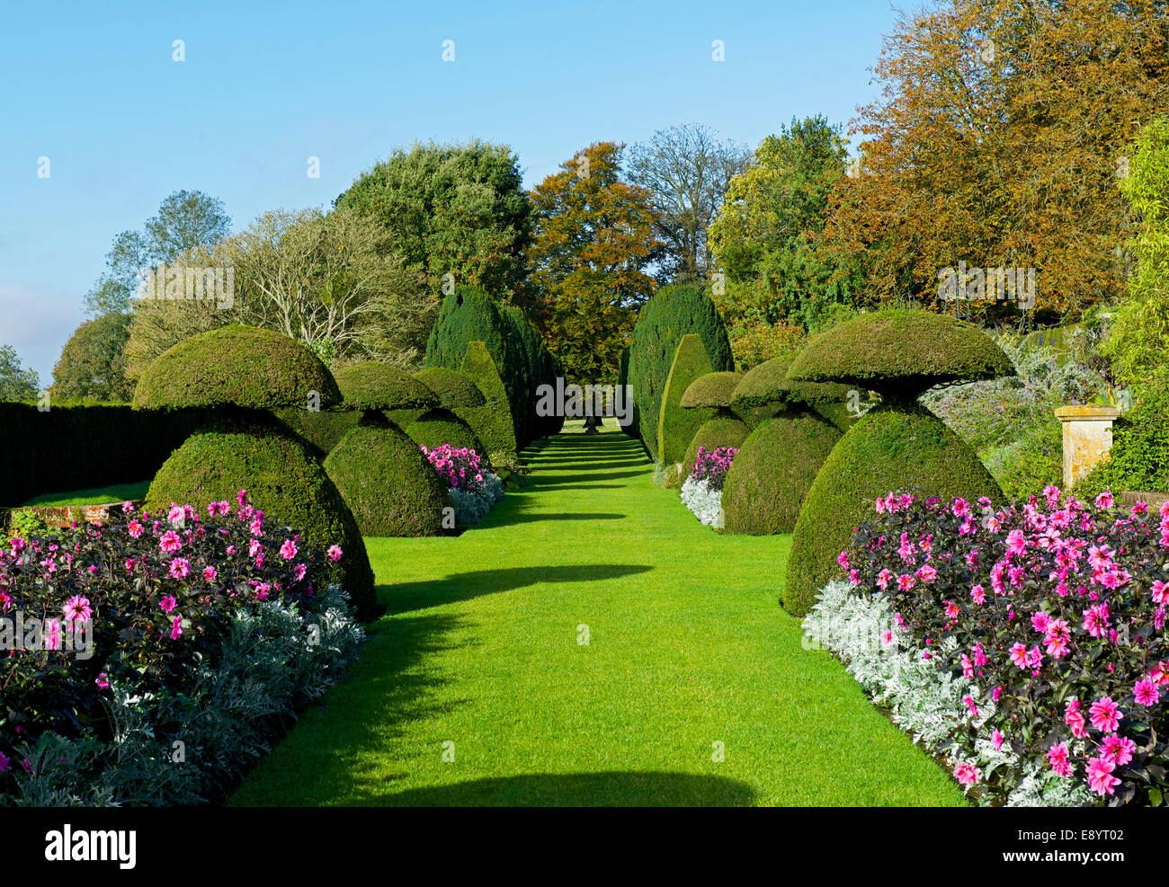 Topiary gardens at Hinton Ampner, a stately home near Alresford, Hampshire, England UK - Stock Image