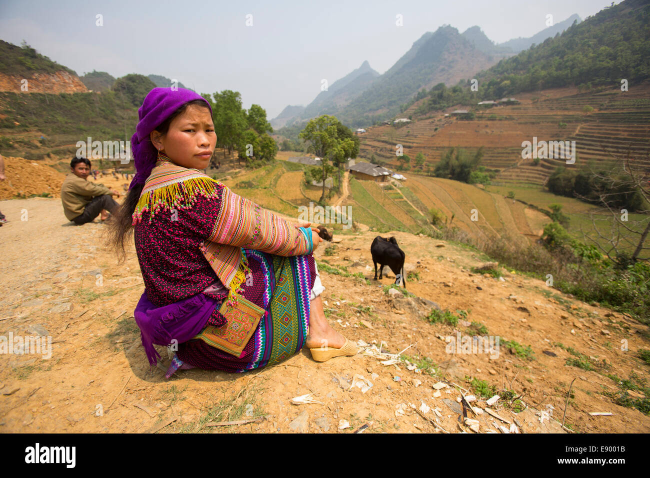 Vietnamese Flower Hmong woman sitting above rice terraces - Stock Image