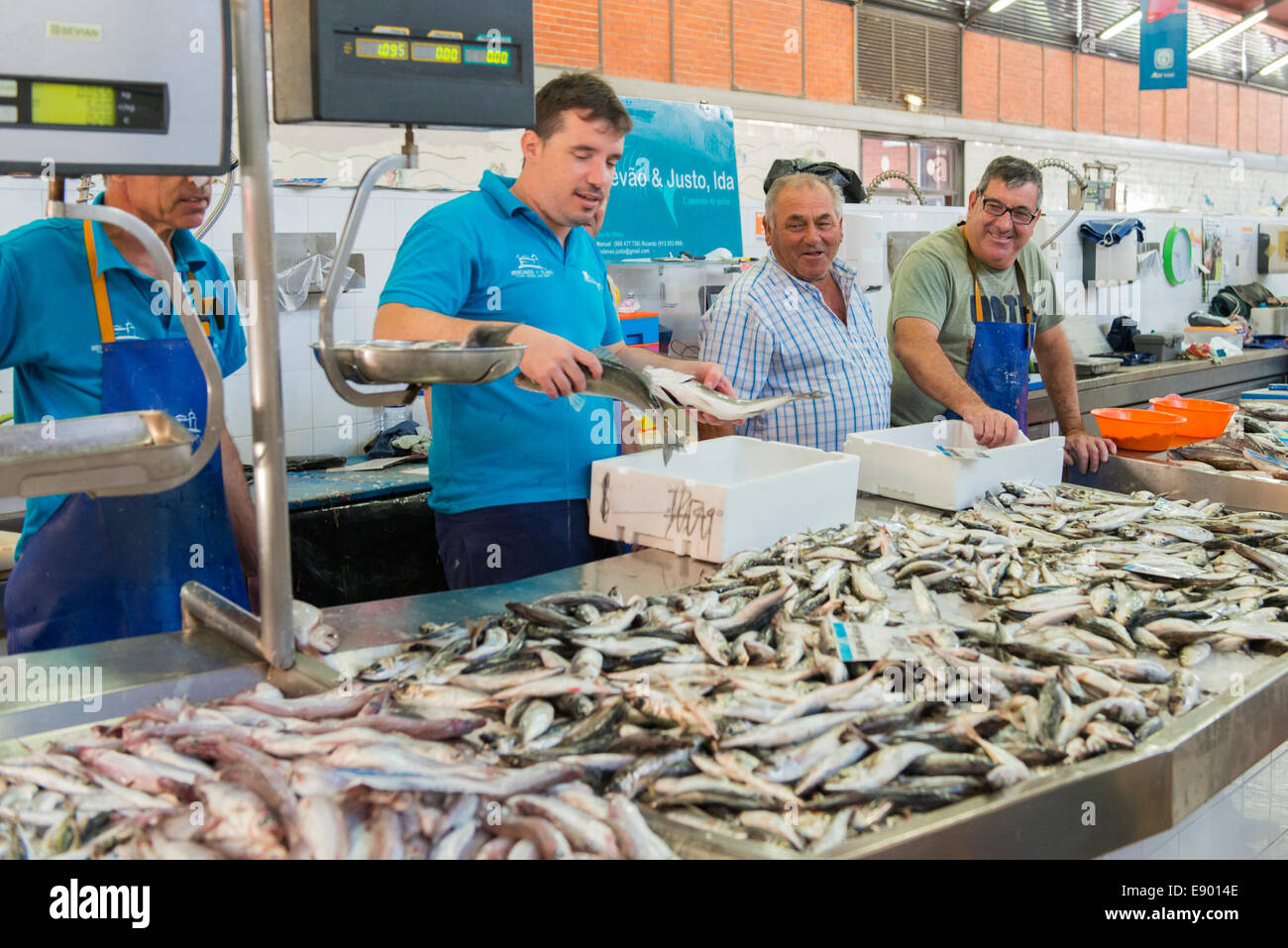 Portugal Algarve Olhoa fish market counter sardines sardine men unpacking - Stock Image