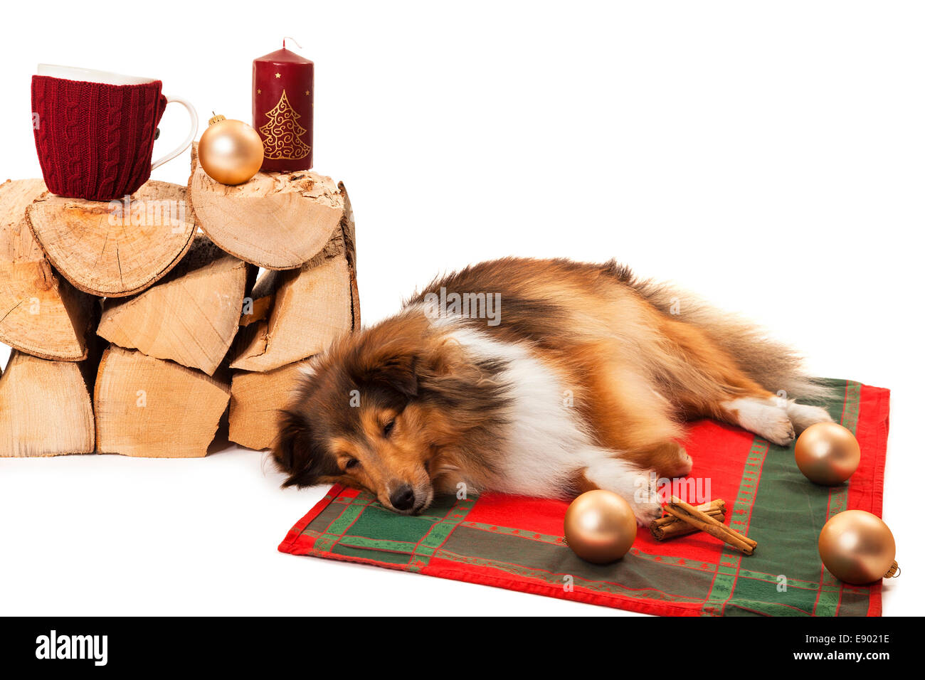 Dog sleeping near the knitted cup and christmas ornaments on stack of firewood - Stock Image