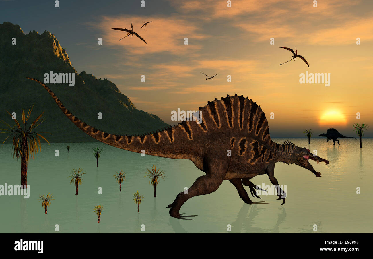 Spinosaurus Dinosaurs Hunting For Food. - Stock Image