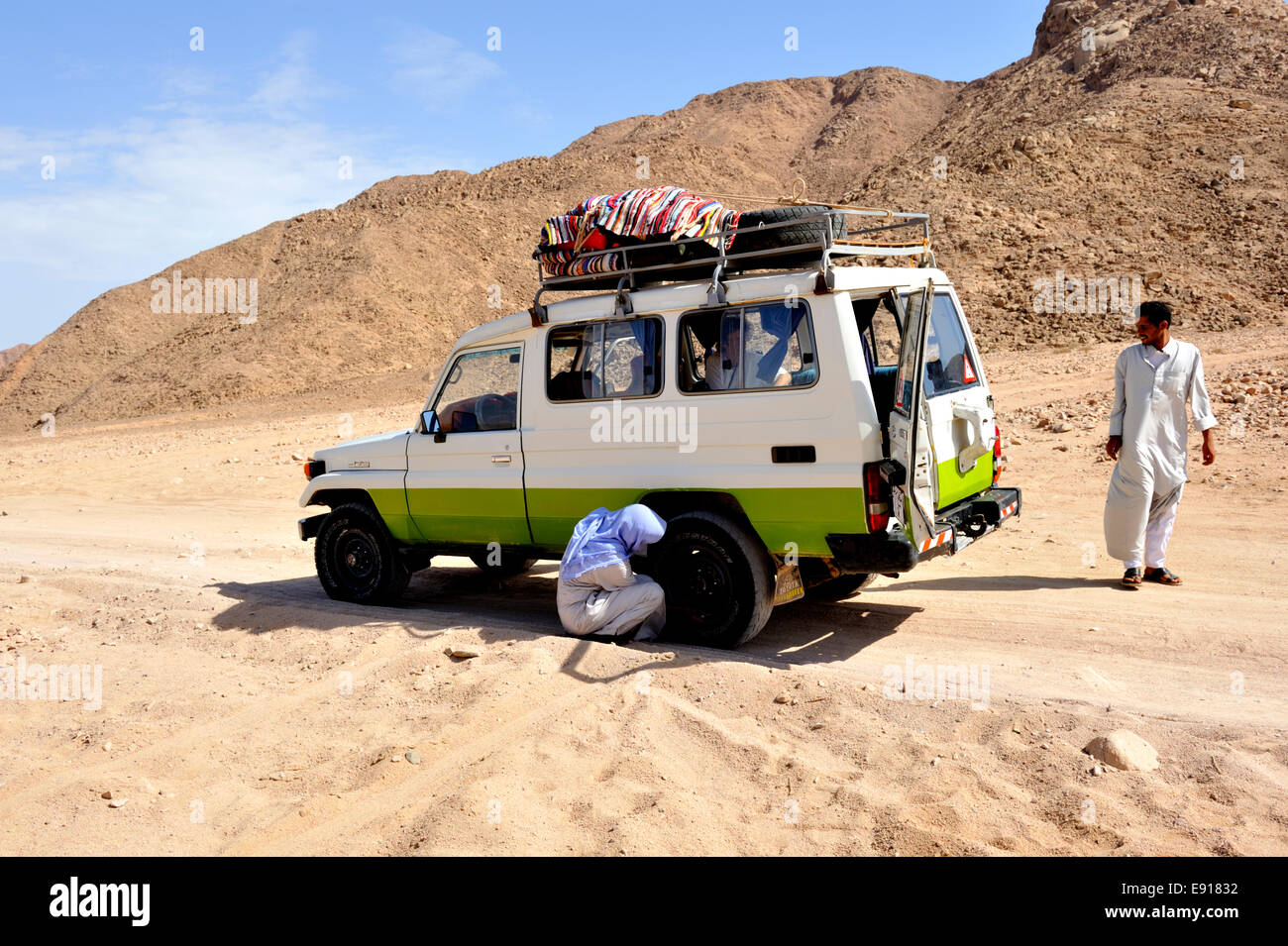 Bedouin Arab checking tyres on off road track in south Sinai desert with 4 wheel drive car, Egypt Stock Photo