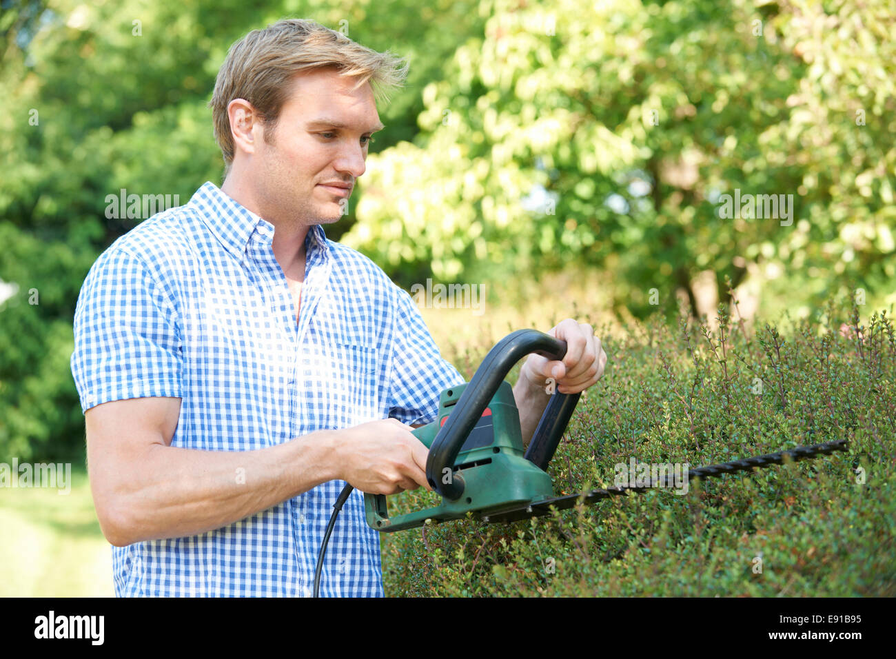 Man Cutting Garden Hedge With Electric Trimmer - Stock Image