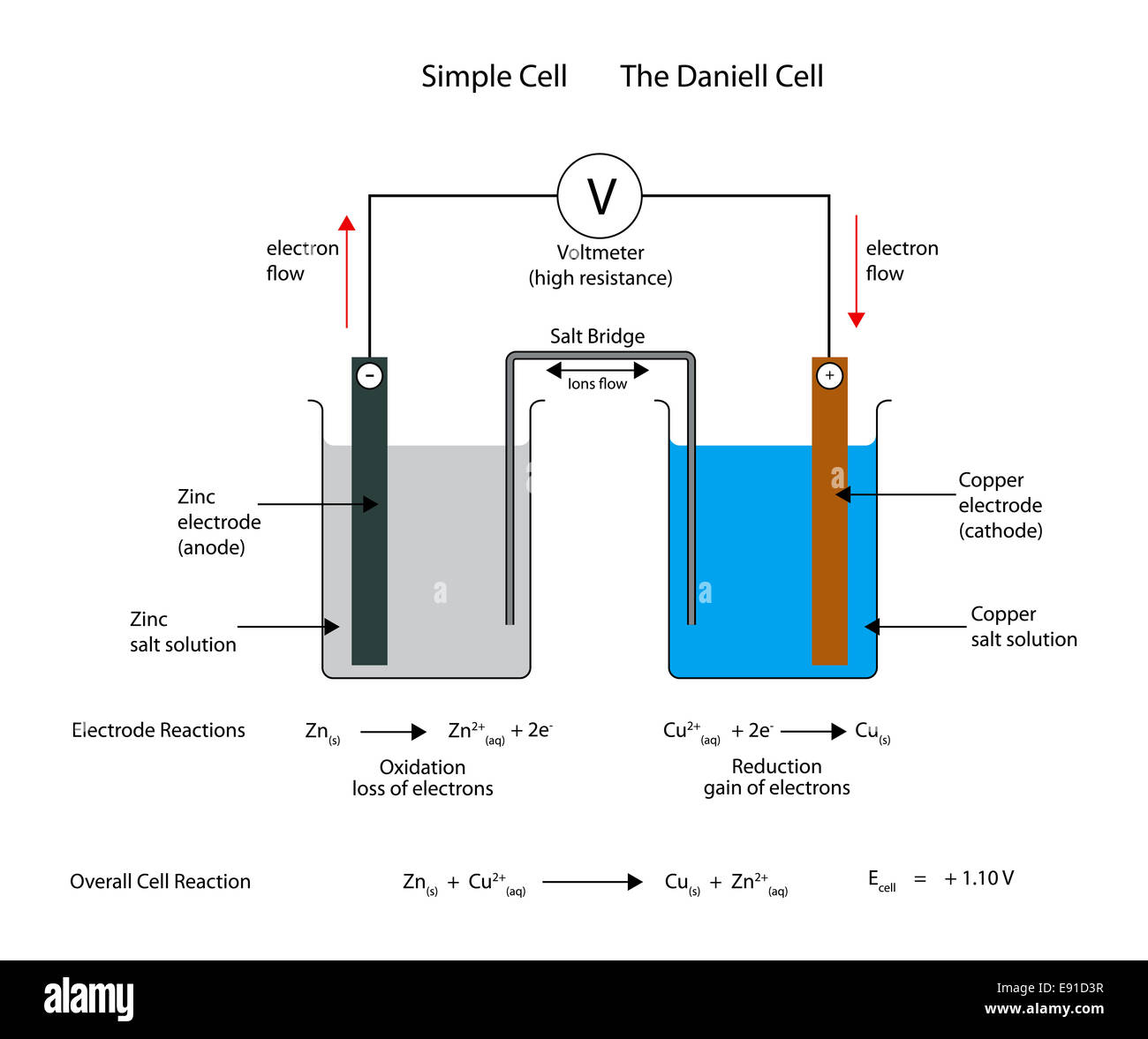 Simple electrochemical or galvanic cell the daniell cell stock simple electrochemical or galvanic cell the daniell cell ccuart Gallery