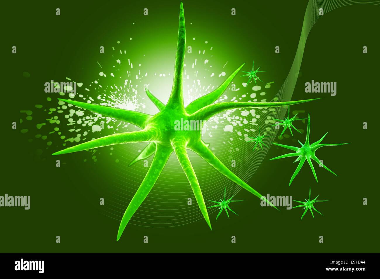 Neuron - Stock Image