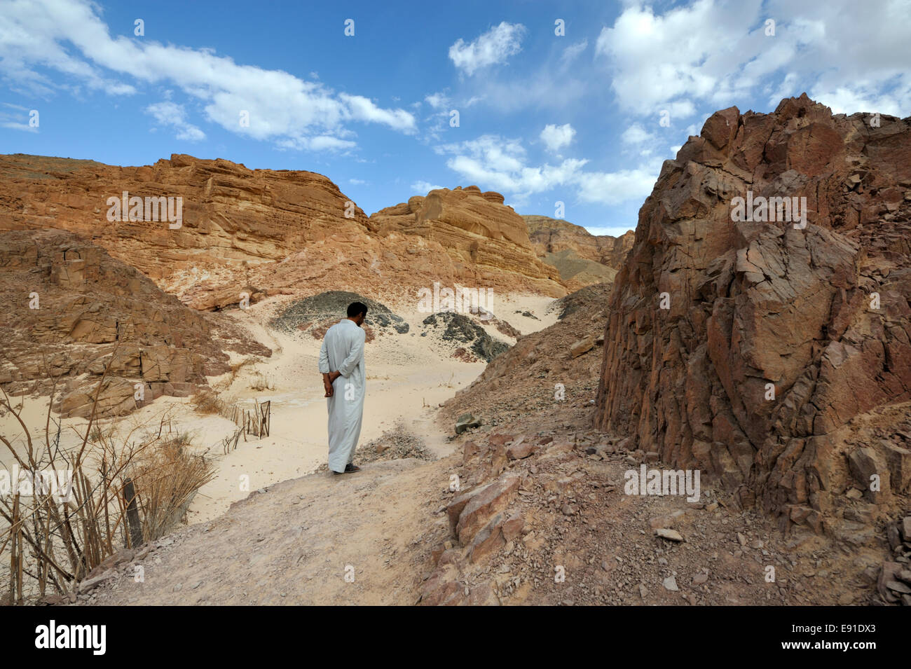 Bedouin Arab in contemplation walking along desert path at end of  White Canyon south Sinai near Ain Hudra Oasis - Stock Image