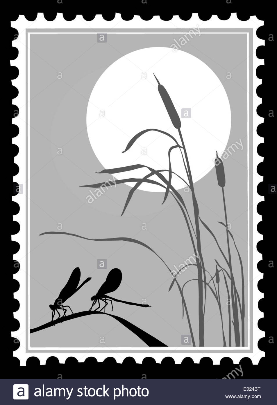 silhouette dragonfly on postage stamps stock photo 74420748 alamy