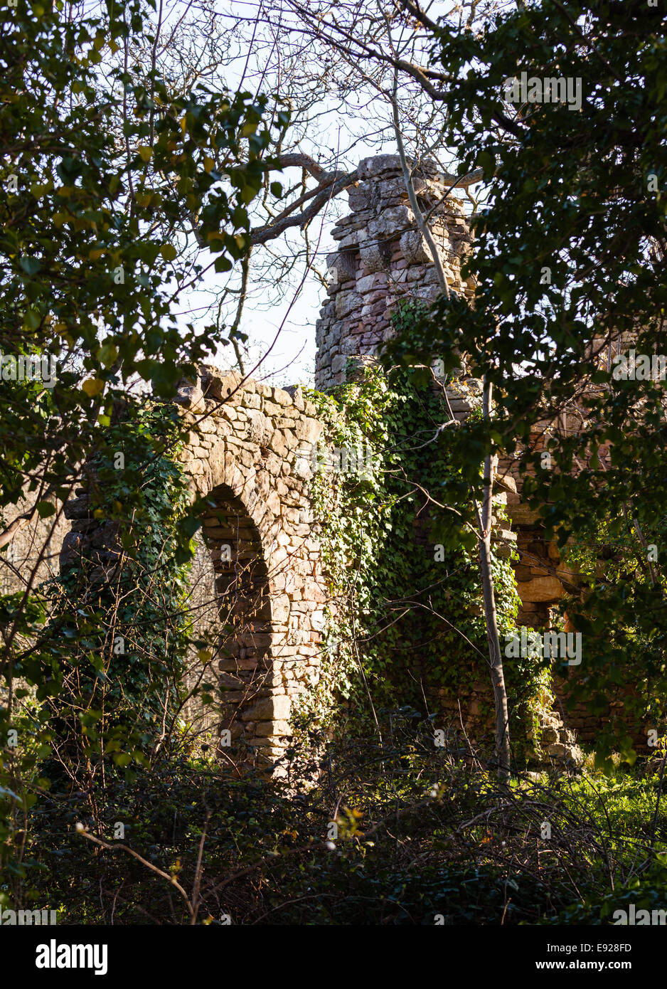 Old ruined castle in woods - Stock Image