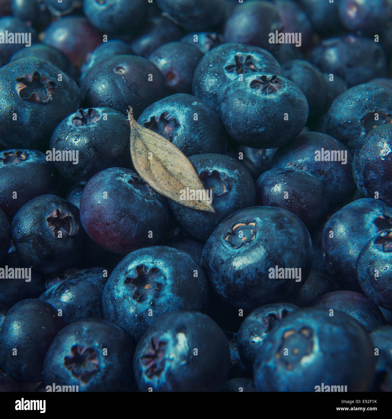 Fresh blueberries with leaf - Stock Image