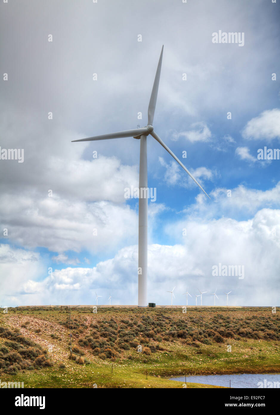 Power mills field - Stock Image