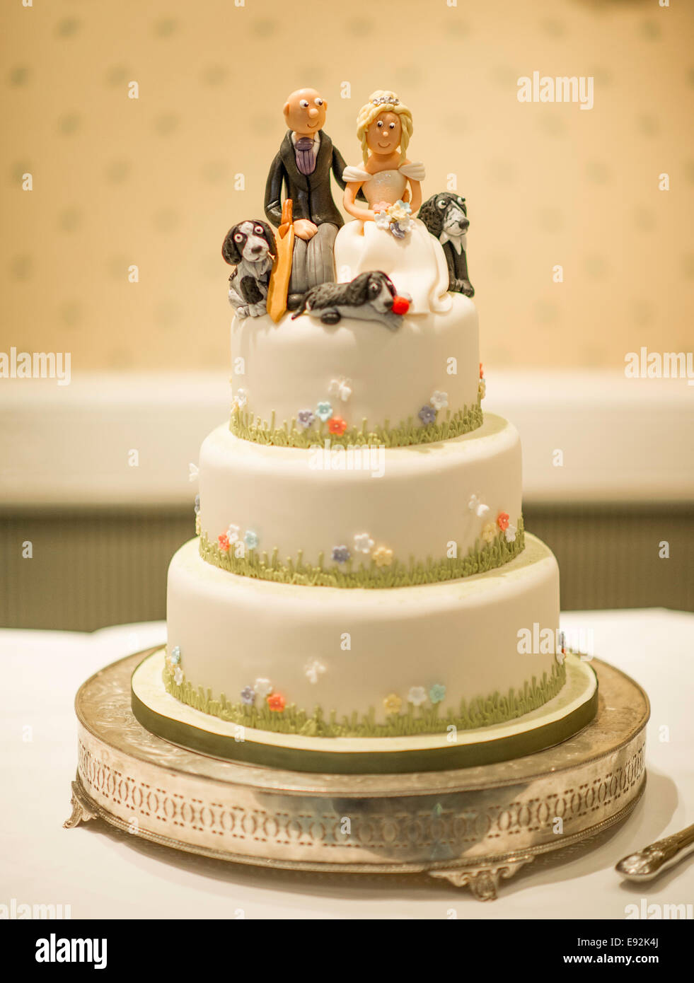 Cake For Dogs Stock Photos & Cake For Dogs Stock Images - Alamy
