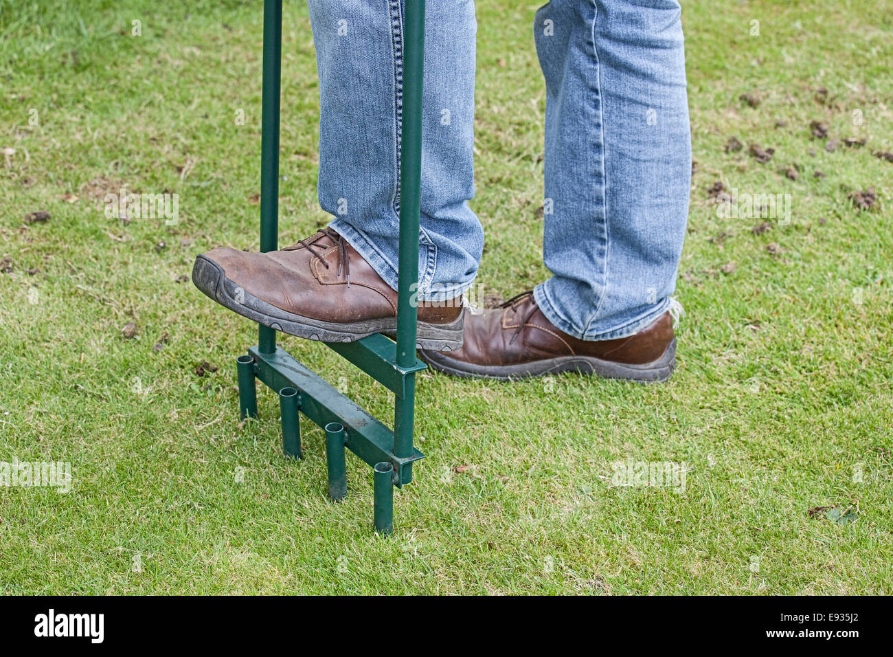 aerating lawn using hollow tine tool - Stock Image