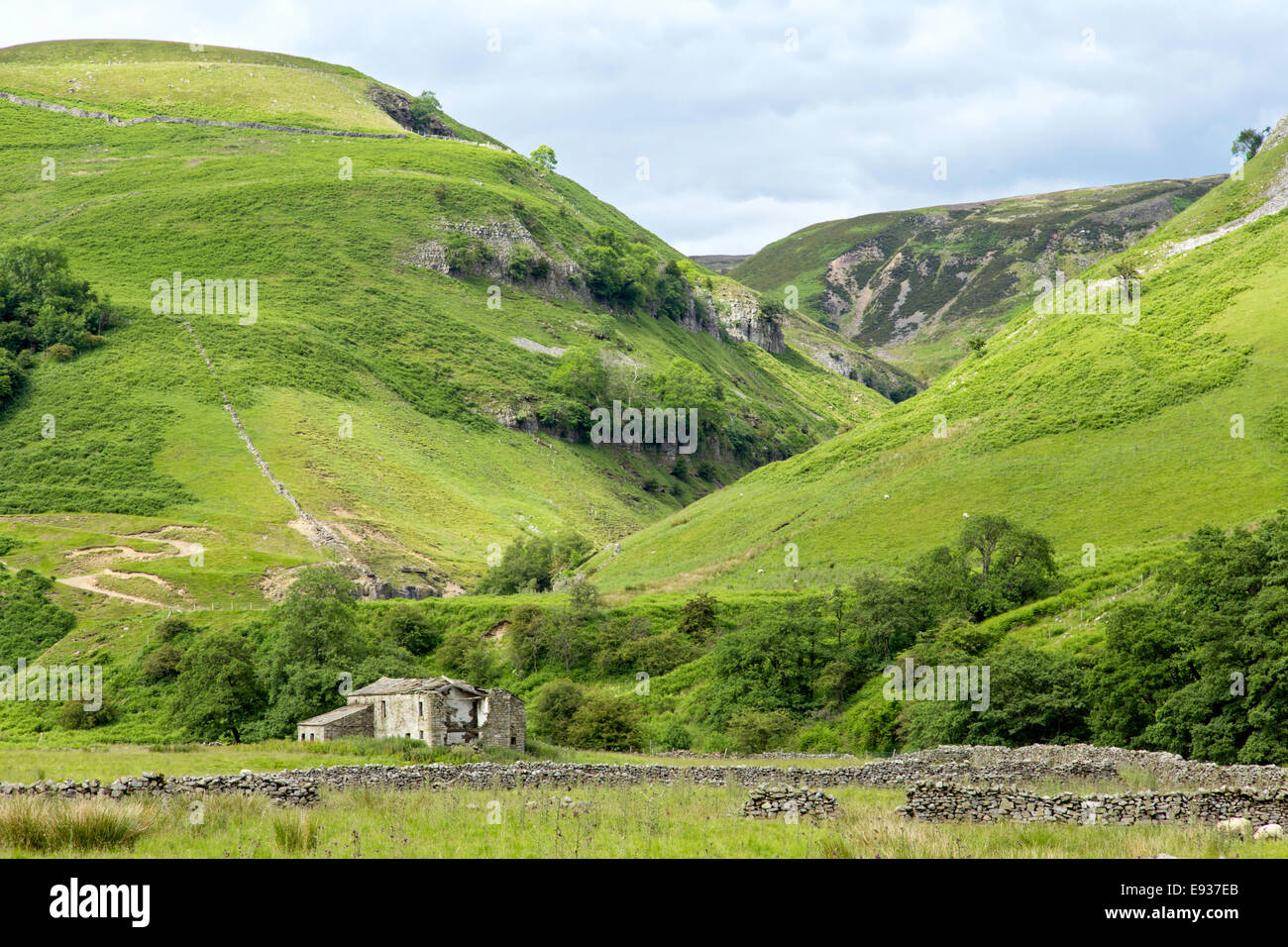 Swinner Gill from Kisdon Side on the Pennine Way between Muker and Keld, Yorkshire Dales National Park, North Yorkshire, - Stock Image