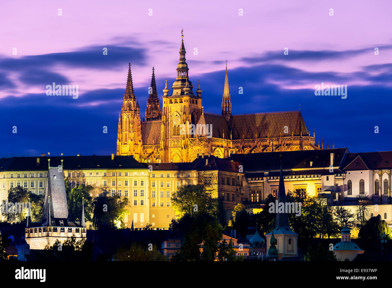 The Castle And Cathedral At Night