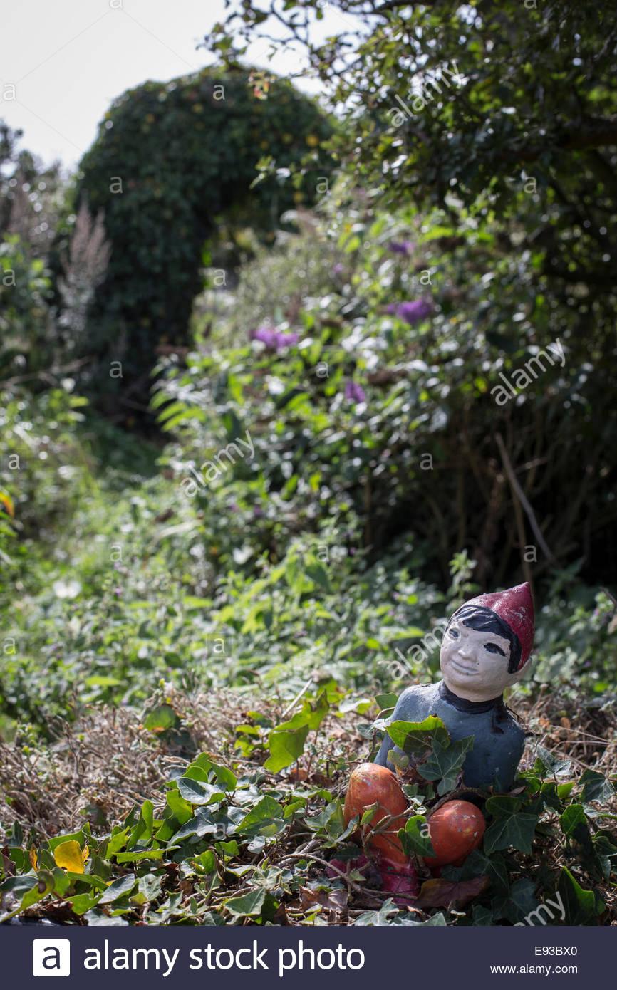 Garden gnome in country garden - Stock Image